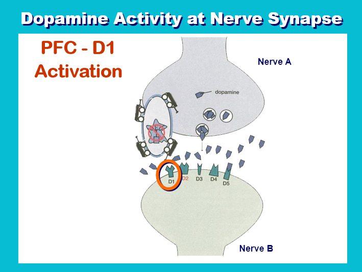Dopamine add