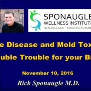 lyme-disease-treatment-oldsmar-florida_Sponaugle Wellness Institute_4