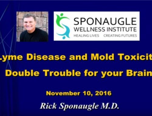 Lyme Disease & Mold Toxicity | Double Trouble For Your Brain